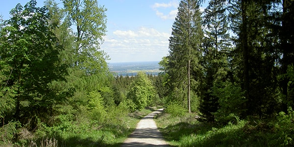 Wanderwege rund um Wenningsen
