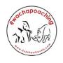 the-ricksha-travels-wachapoaching