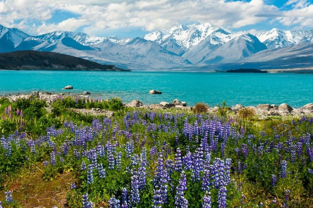 Lavendel Berge und Meer