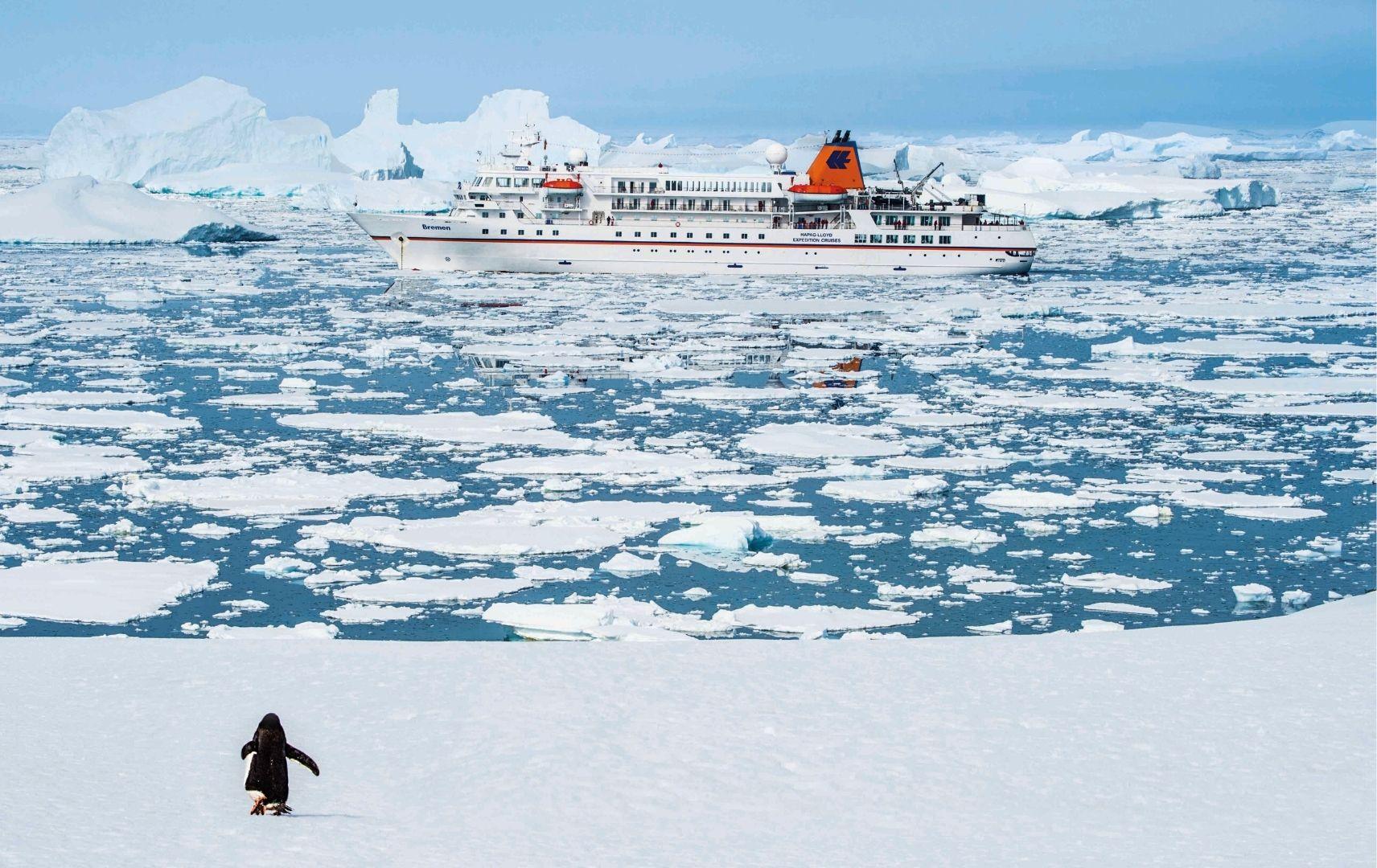 Schiff auf dem Meer Eisbrocken Pinguin