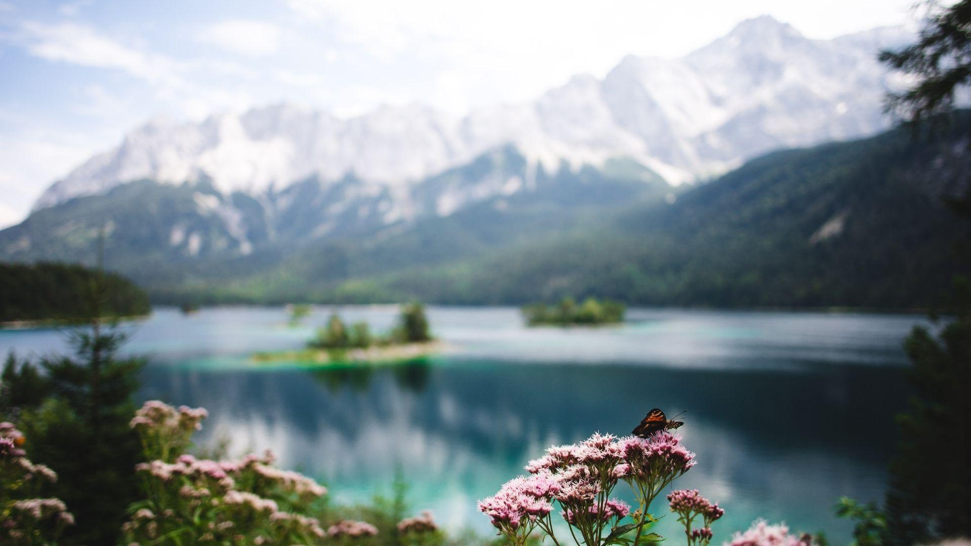 Bayern Alpenpanorama und Bergsee
