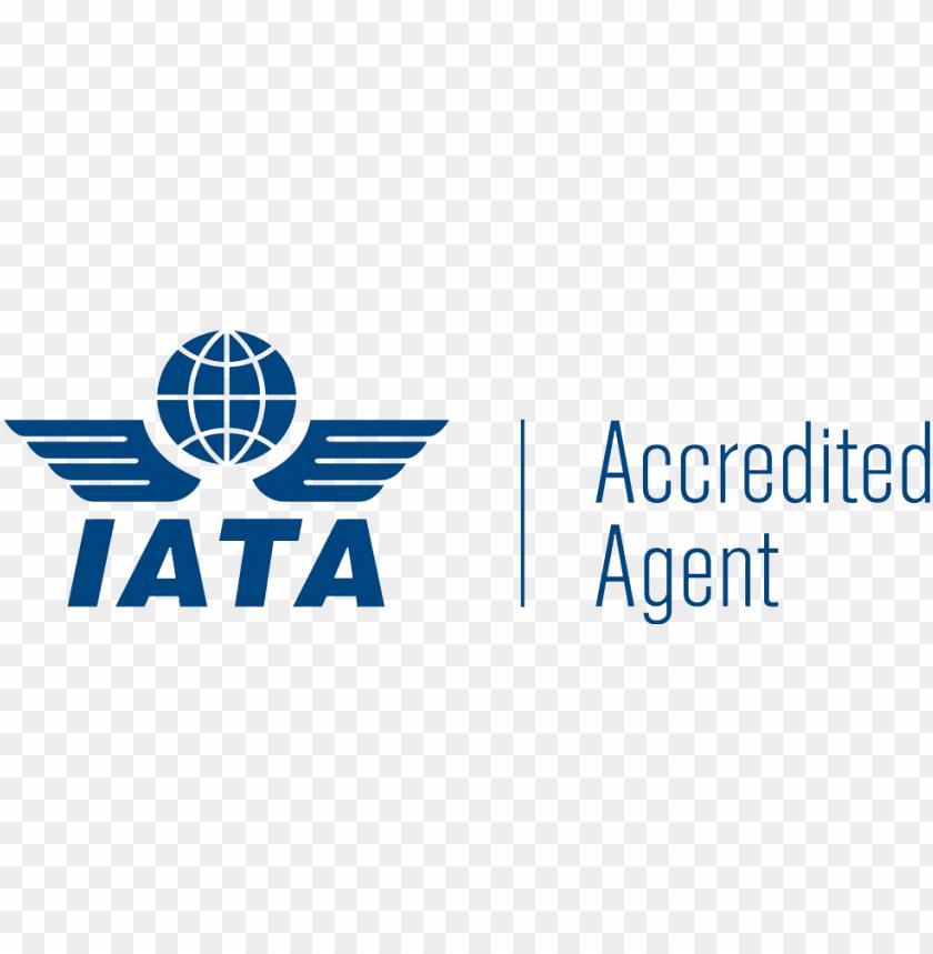 Logo 3 IATA
