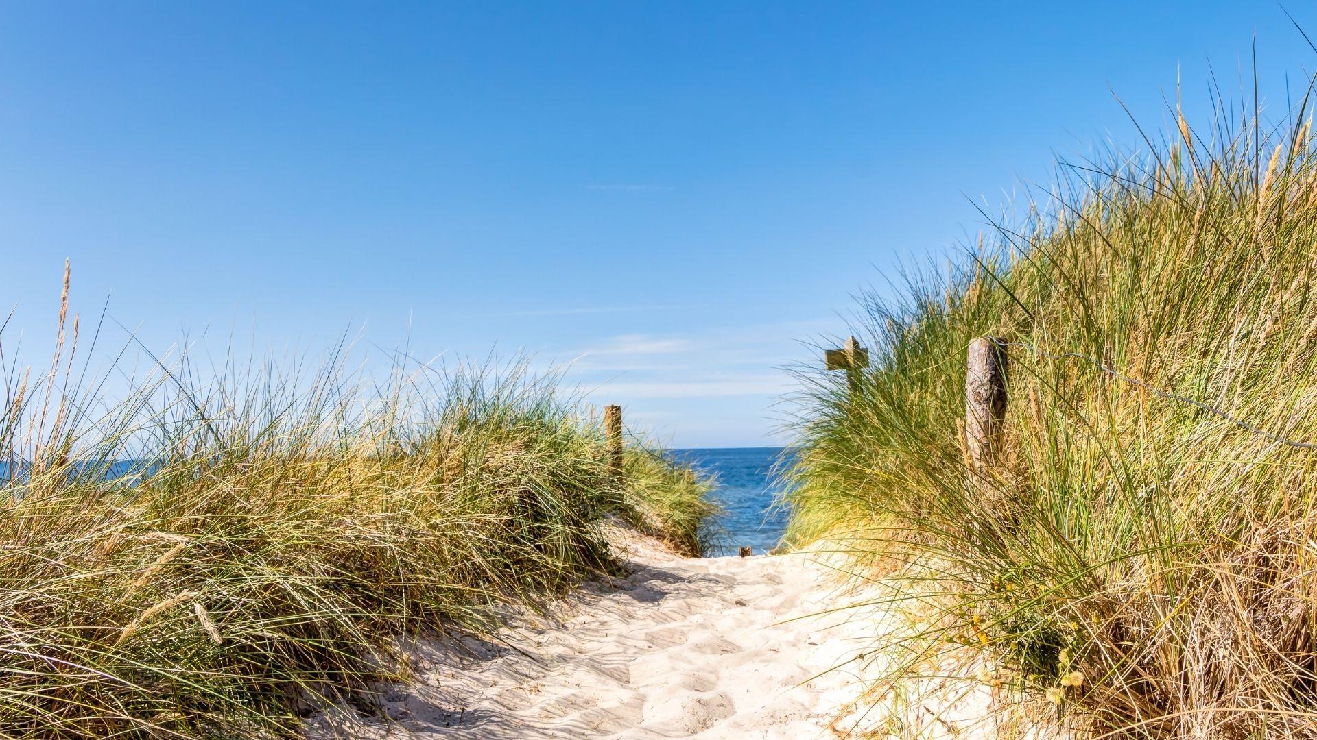 Strand & Dünen an der Ostsee