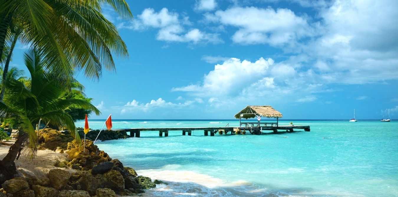 Palmen Strand Steg in der Karibik