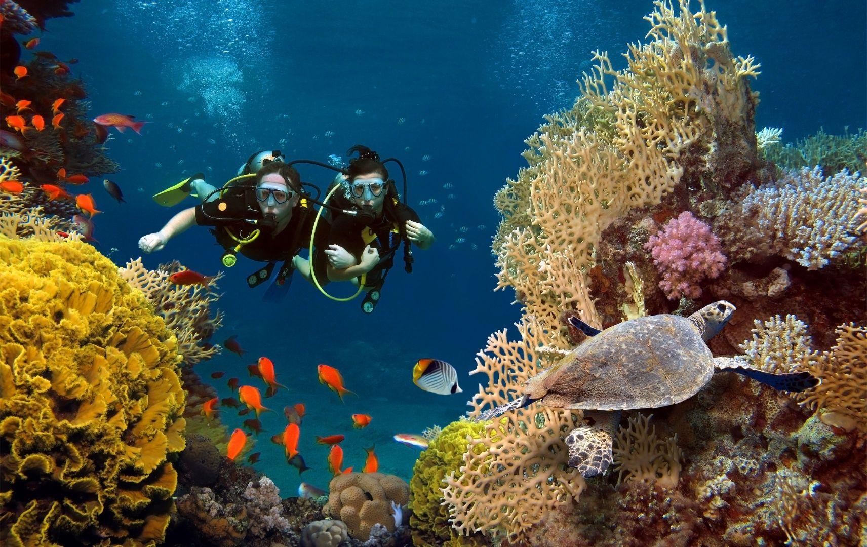 Tauchen Malediven
