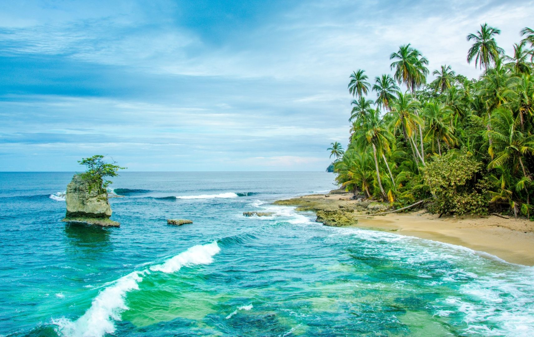 Strand mit Palmen Costa Rica