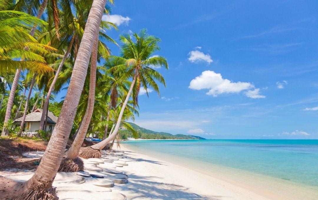 Fernreise Asien - Koh Samui Strand