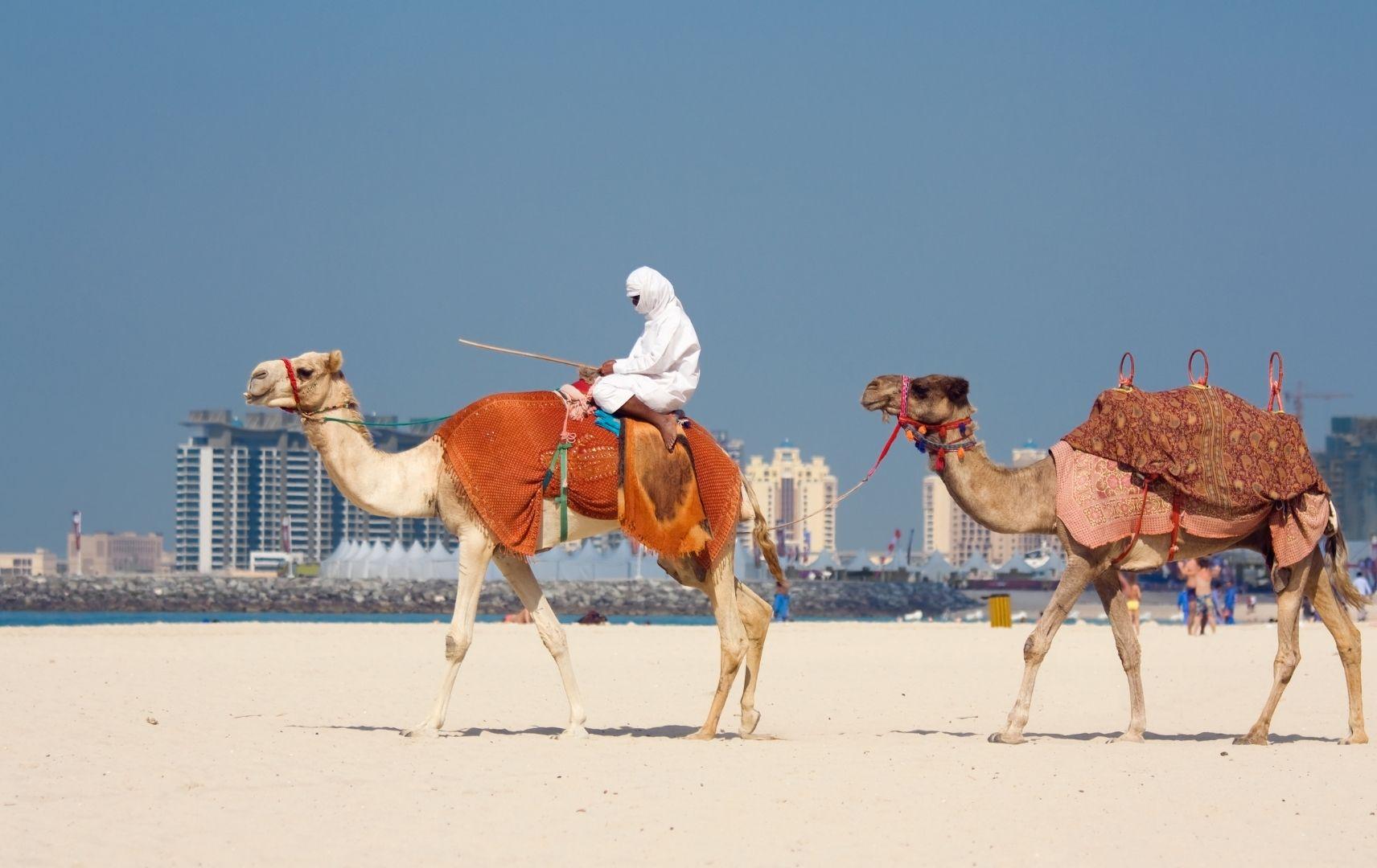Dubai Kamelreiter