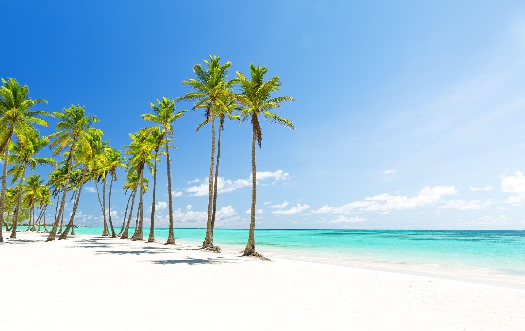 Punta Cana, Strand mit Palmen
