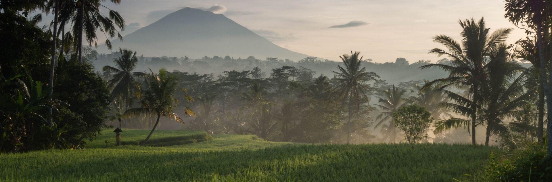 Fernreise Indonesien - Bali