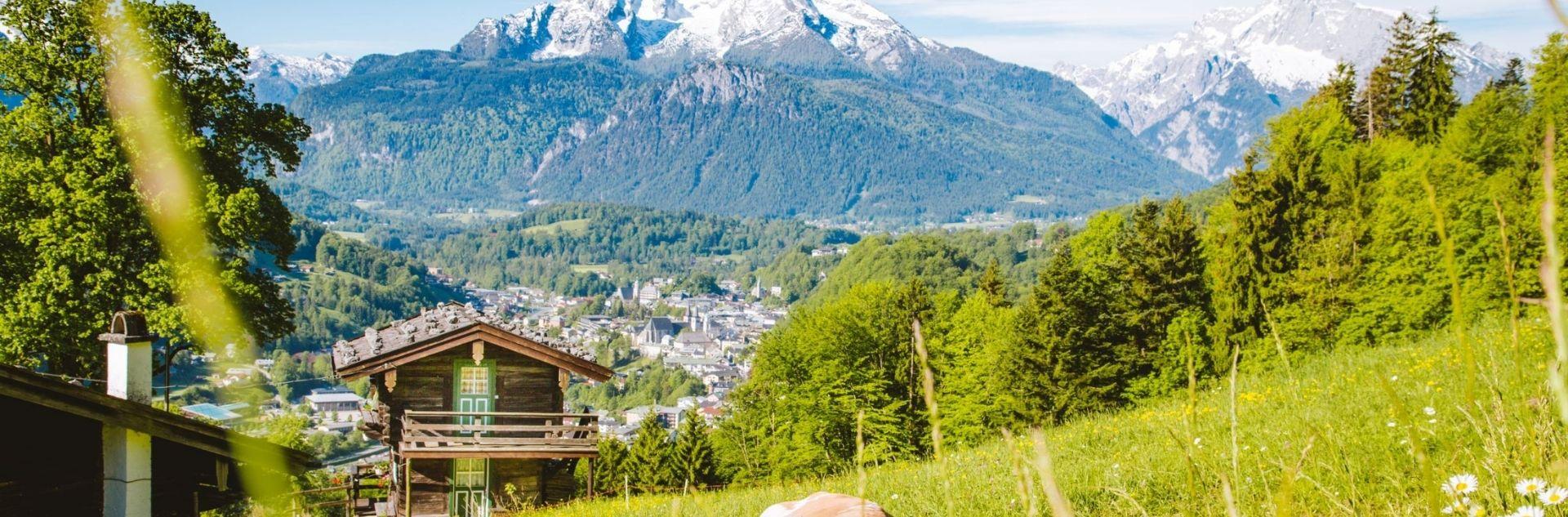 Österreich - Berge und Wiese