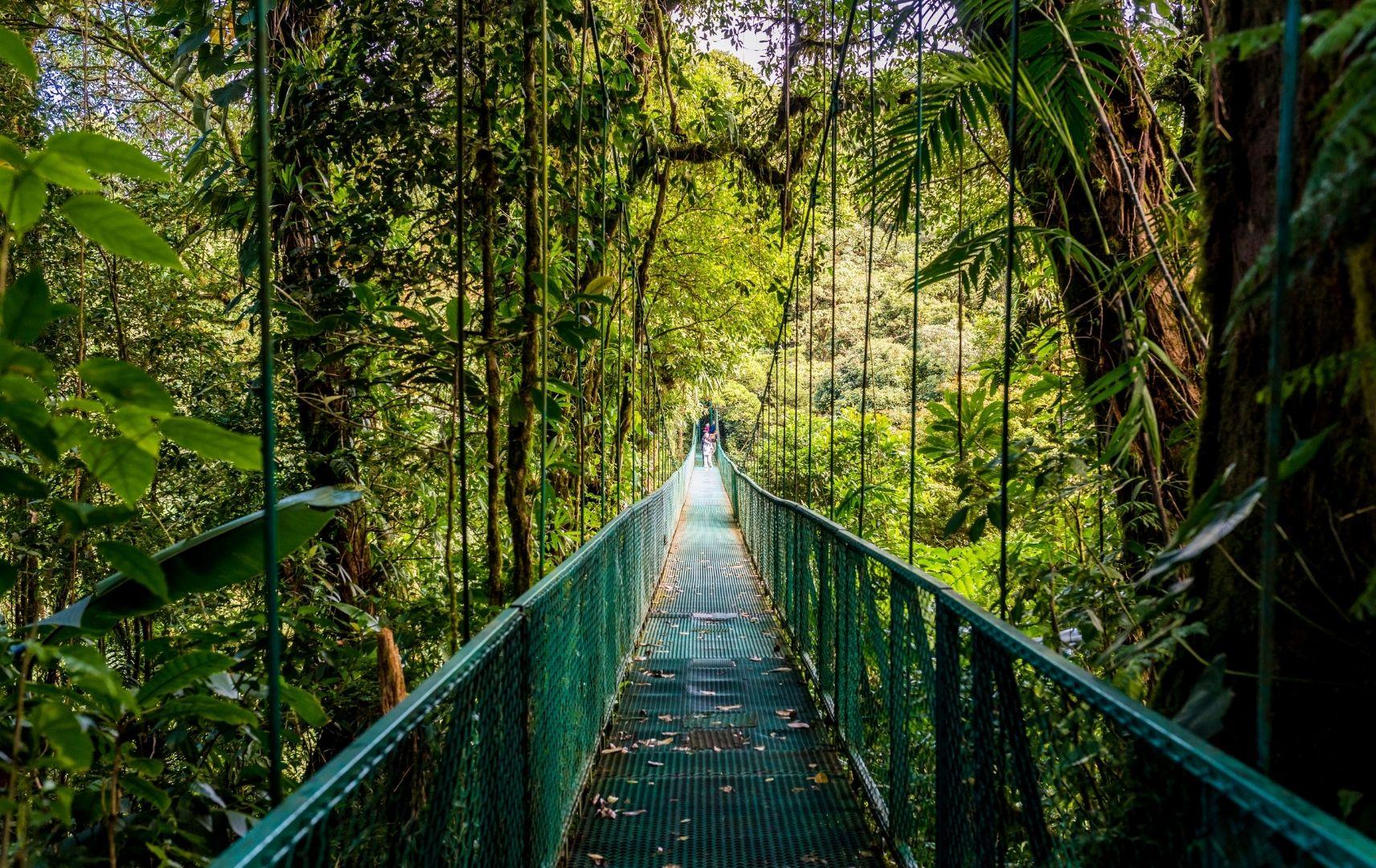 Allein Reisen - Costa Rica Jungle