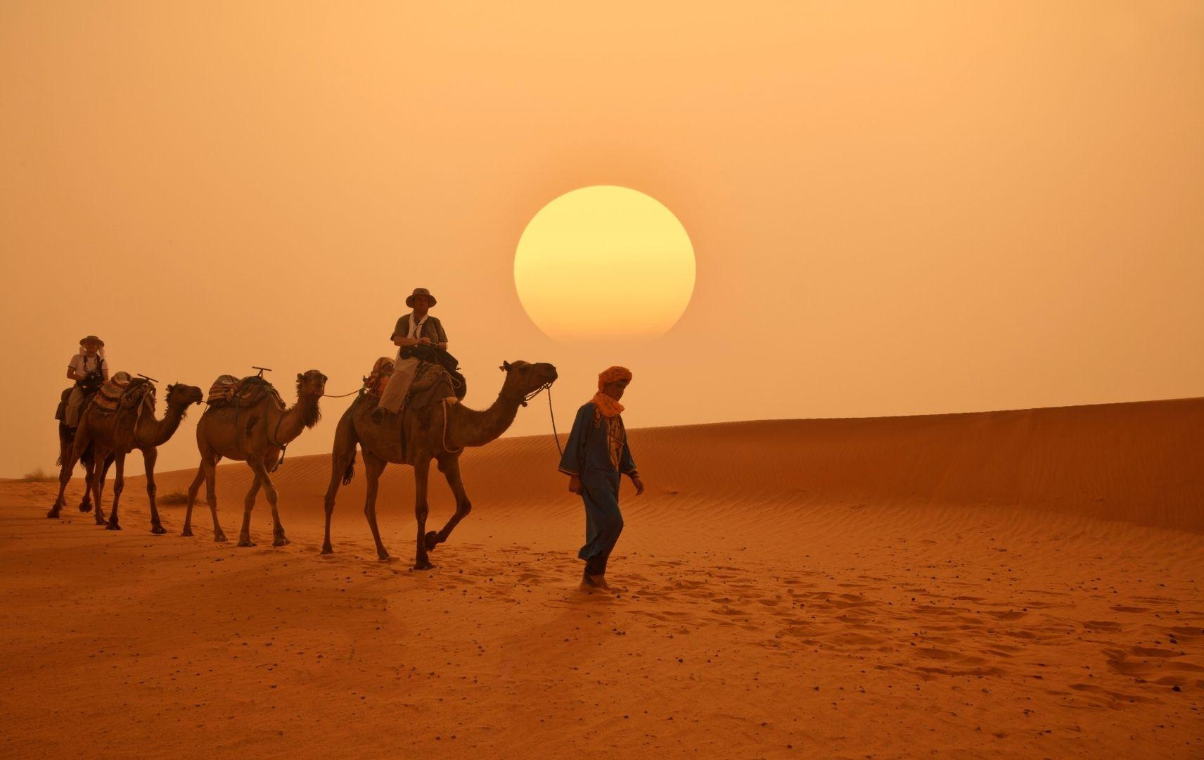 Marokko - Wüste und Kamele