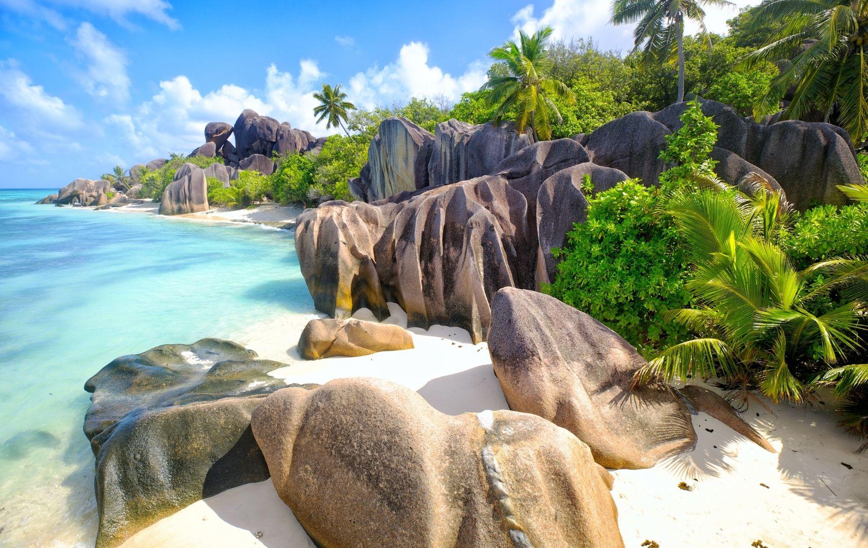 Seychellen Strand mit Palmen
