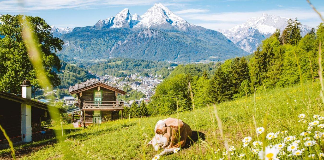 England - Reise Europa Feld und Berge