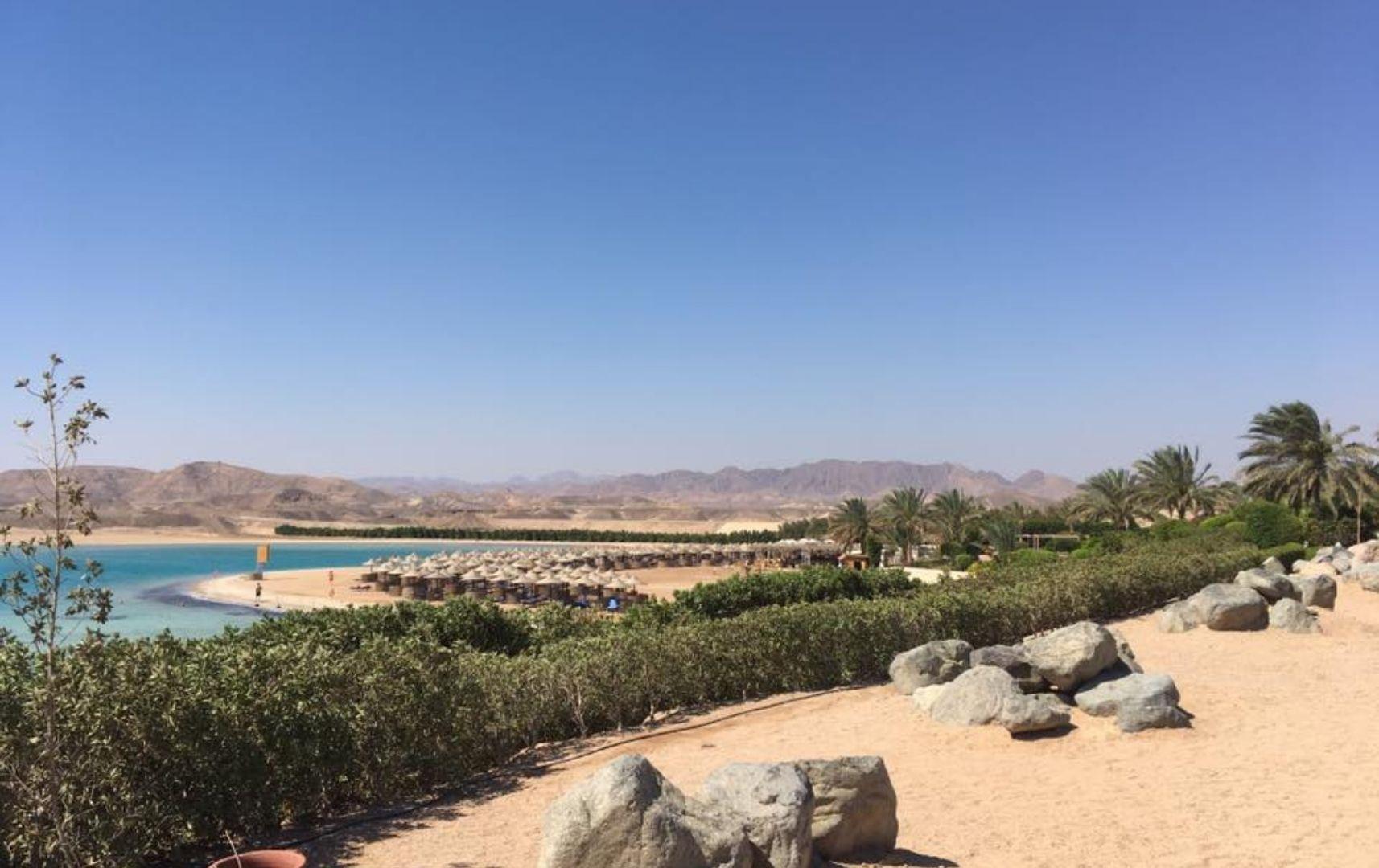 Ägypten Reisebericht Reiseart