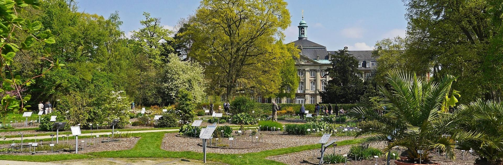 Botanischer Garten in Münster Westfalen