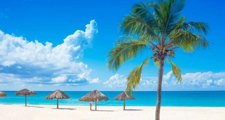 Sandstrand von Curacao mit Palmen und Schirmen