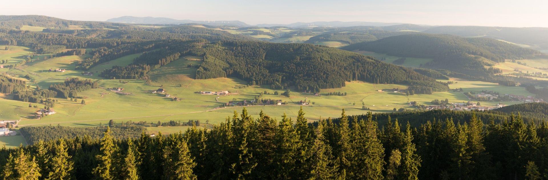 Schwarzwald Ferienregion