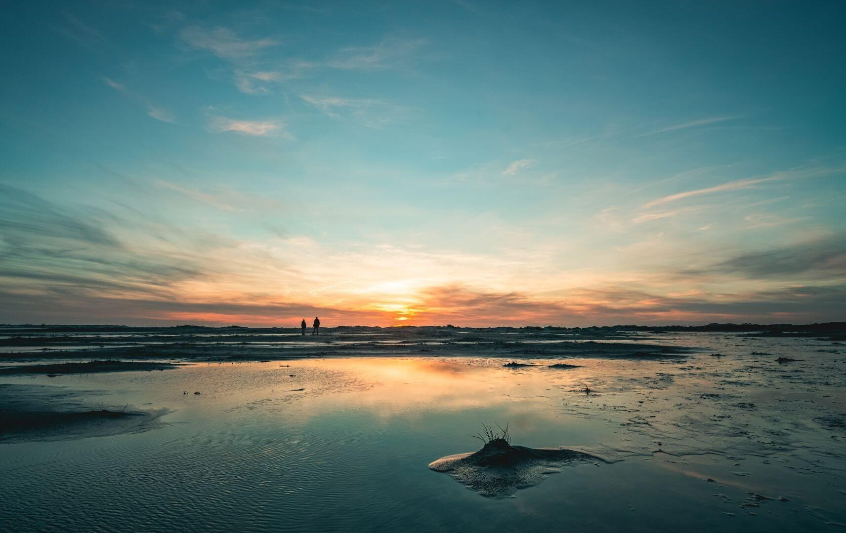 Wattwanderung im Wattenmeer an der Nordsee