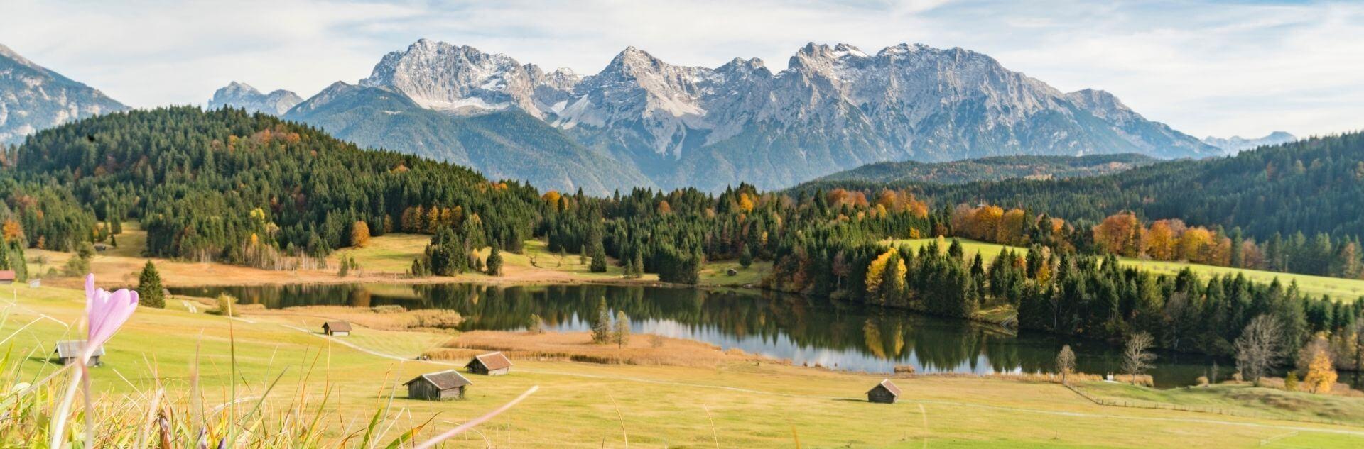 Alpenpanorama mit Wiese und See