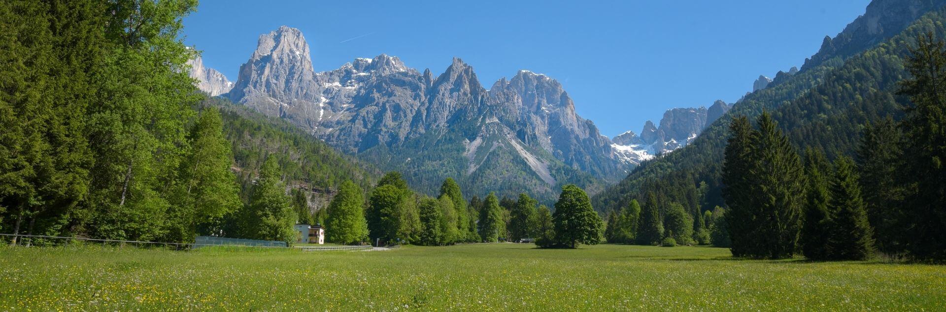 Grüne Wiesen und Berge in Trentino und Südtirol