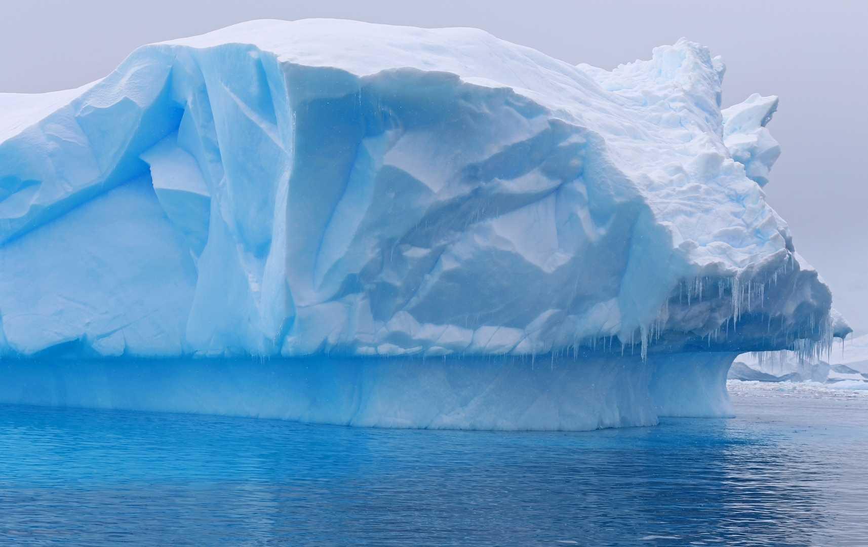 Cierva Cove: Eisblock im Meer, Antarktis