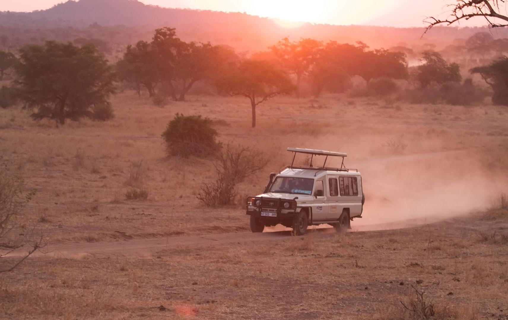 Jeep Safari in Tansania