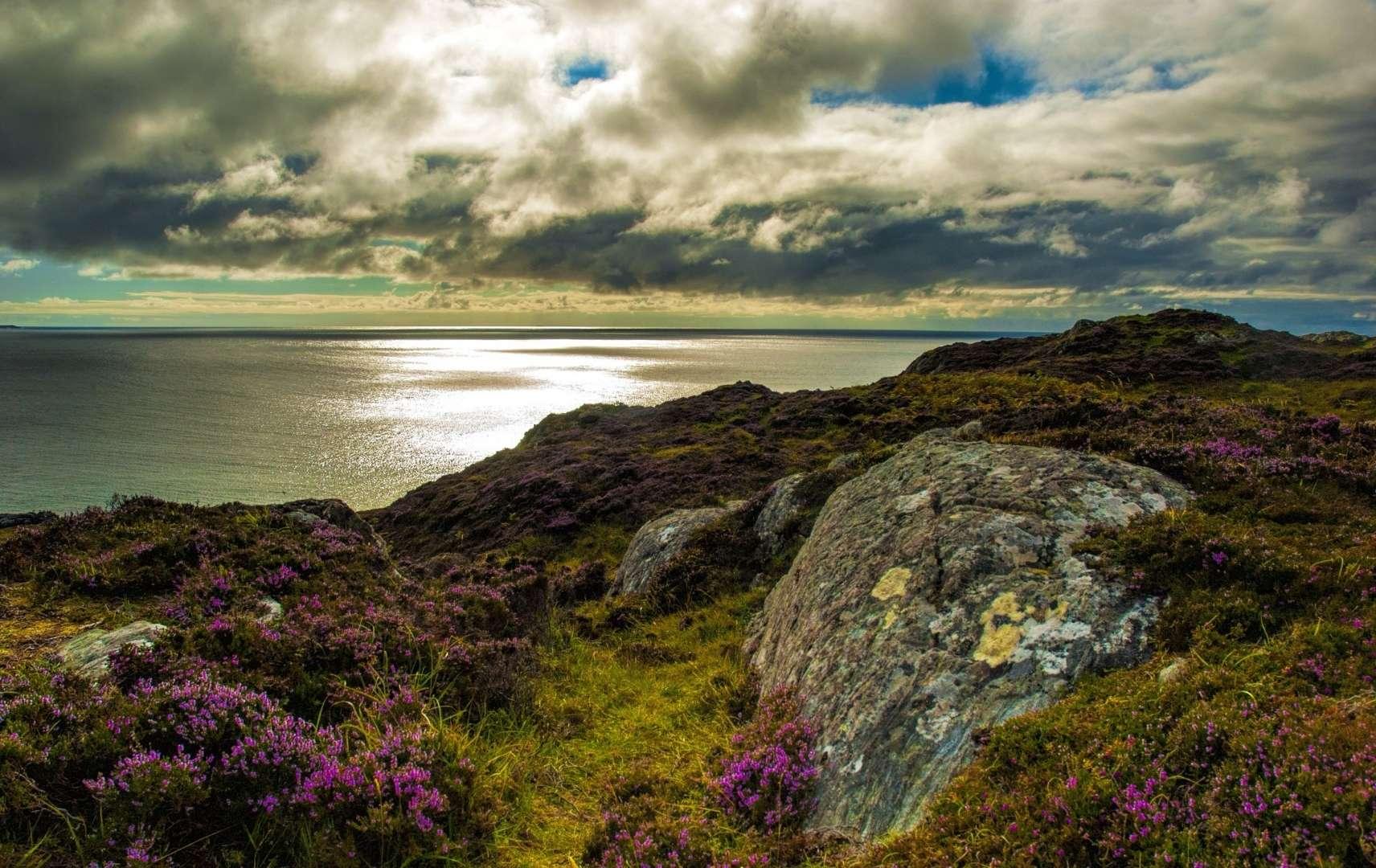 Bewachsene Klippen in Schottland