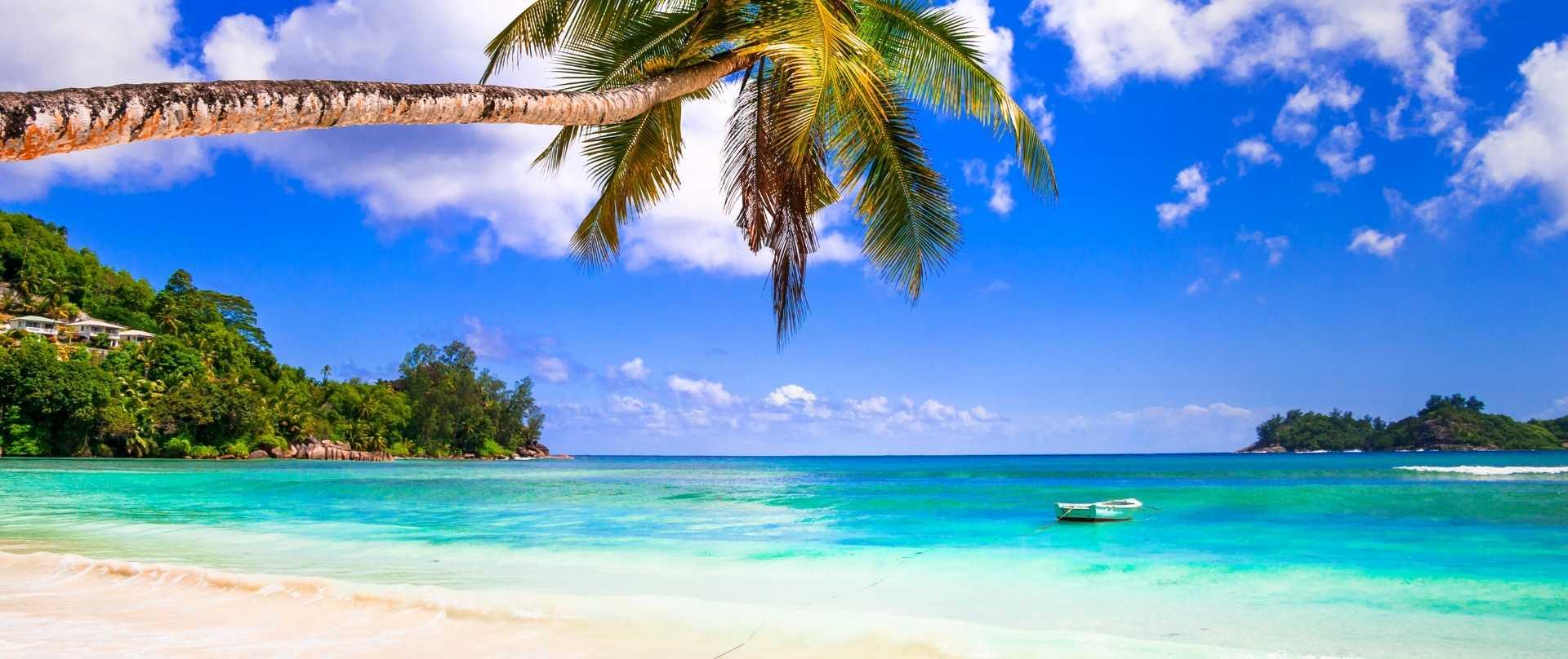 Starnd auf Mauritius Fernreise Paradis
