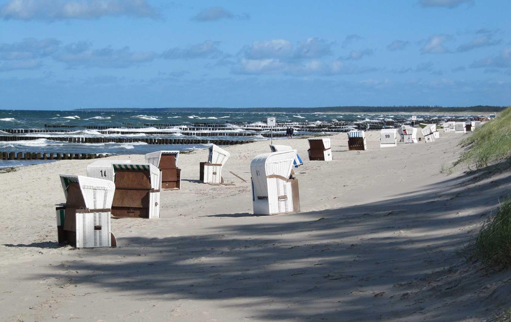 Strand bei Ahrenshoop - Fischland