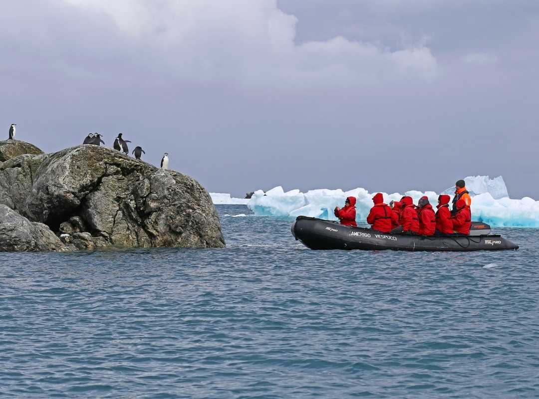 Monroe Island: Auf Zodiaks die Pinguine beobachten